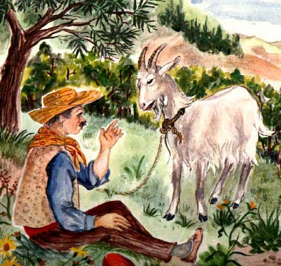 http://www.domaine-des-tourelles.com/fr//images/Images/chevres-miniatures/chevre-seguin.jpg